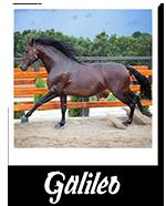 galileo 150
